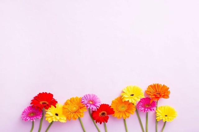 6-Desktop-FloralFooter.jpg